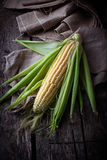 Fresh raw corn on wooden table. Selective focus Stock Images