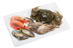 Fresh raw crab, small octopus, shrimp and mussels Royalty Free Stock Photography
