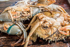 Fresh raw crabs. On fishmarket in Asia stock photo