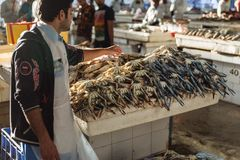 Fresh raw crabs seller at semi-outdoor, open air seafood market near Palm Deira metro station in Dubai.  Stock Photography