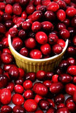 Fresh Raw Cranberries. Pile of Fresh Raw Cranberries with Bowl Royalty Free Stock Photography
