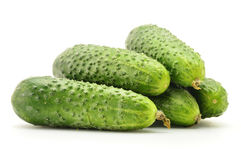 Fresh raw cucumbers  on white. Background Stock Images