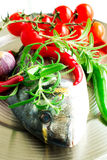 Fresh raw fish in mix of food ingradients. Fresh raw Dorada fish with fresh rosemary herb, garlic, chili peppers and cherry tomatoes on a metal plate Royalty Free Stock Photos