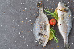 Fresh raw dorado fish on a piece of paper with lemon, rosemary, lemon, cherry tomato on a greay background. Healthy. Eating concept. Mediterranean life style Stock Images