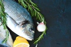 Fresh raw dorado fish with rosemary, garlic and lemon on a black. Slate background. Selective focus. Overhead view Stock Photo