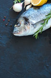 Fresh raw dorado fish with rosemary, garlic and lemon and pepper. On a black slate background. Selective focus. Overhead view. Copy space Royalty Free Stock Photos