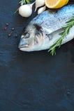 Fresh raw dorado fish with rosemary, garlic and lemon and pepper Royalty Free Stock Photos