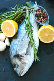Fresh raw dorado fish with rosemary, garlic and lemon and pepper. On a black slate background. Selective focus. Overhead view. Copy space Stock Photos