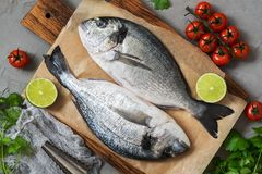 Fresh raw dorado fish. Two fish on a cutting board with ingredients for cooking. View from above. Fresh raw dorado fish. Two fish on a cutting board with Royalty Free Stock Photography