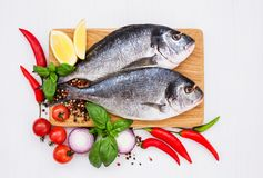 Fresh raw dorado fish on wooden cutting board. Top view,. Copy space Stock Photography
