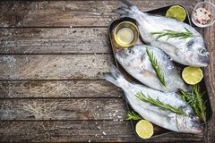 Fresh raw Dorado royalty free stock photo