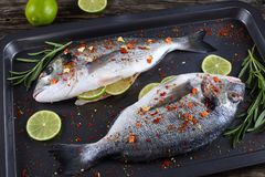 Fresh raw dorado or sea bream. Fish with lemon slices, rosemary,  sprinkled with spices on baking sheet, on old dark wooden worktop with ingredients on Stock Photo