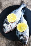 Fresh raw Dorado sea  fish on wooden  board with  lemon and salt. Top view Stock Images