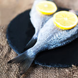 Fresh raw Dorado sea  fish on wooden  board with  lemon and salt. Fresh raw Dorado sea fish on wooden board with lemon and salt. Top view Stock Images