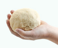 Fresh raw dough in bakers hand Royalty Free Stock Image