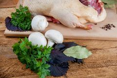 Fresh raw duck mushrooms. And spices prepared for cooking Royalty Free Stock Photos
