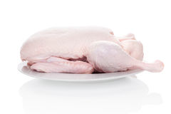 Fresh raw duck. Fresh raw duck on white background. Culinary cooking Stock Image