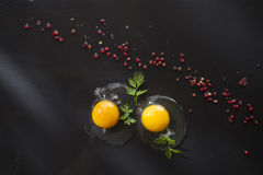 Fresh raw egg Stock Photos