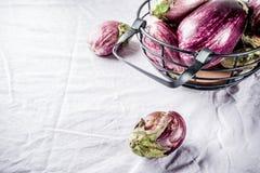 Fresh raw eggplants. Autumn harvest, vegetables, fresh raw eggplants, organic vegan food, linen tablecloth background copy space Stock Images