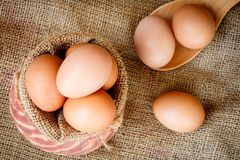 Fresh raw eggs in clay pot Stock Photography