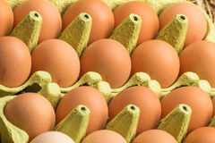 Fresh raw eggs Royalty Free Stock Photos