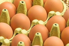 Fresh raw eggs Stock Image
