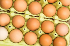 Fresh raw eggs Royalty Free Stock Images