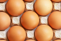 Fresh raw eggs in tray. Fresh raw eggs in the tray Royalty Free Stock Image
