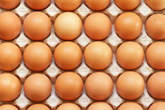Fresh raw eggs used as background. Fresh raw eggs in the tray Stock Photography