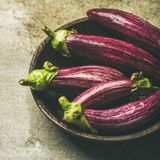 Fresh raw Fall harvest purple aubergines, square crop. Fresh raw Fall harvest purple eggplants or aubergines in wooden bowl over grey concrete stone background Royalty Free Stock Images