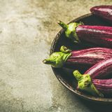 Fresh raw Fall harvest purple eggplants, copy space. Fresh raw Fall harvest purple eggplants or aubergines in wooden bowl over grey concrete stone background Royalty Free Stock Photography
