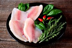 Fresh raw fillet of tilapia fish with thyme, rosemary, basil and chili pepper. Food Stock Photo
