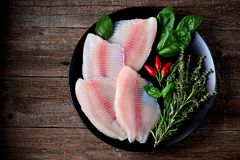 Fresh raw fillet of tilapia fish with thyme, rosemary, basil and chili pepper. Food Royalty Free Stock Photo
