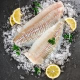 Fresh raw fillet white fish Pangasius with spices on ice over dark stone background.  Seafood, top view, flat lay, copy space. Fresh raw fillet white fish royalty free stock photography