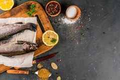 Fresh raw fish brown trout. On on a cutting board a stone table with lemon spices and herbs, top view, copy space Stock Images