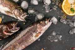 Fresh raw fish brown trout. On a stone table with ice, lemon spices and herbs, top view Stock Photo