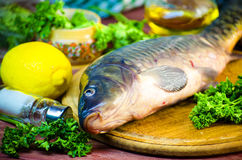 Fresh raw fish carp. On a wooden board in the kitchen Royalty Free Stock Image