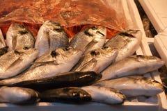 Fresh raw fish. Closeup of fresh raw fish on sea market table Royalty Free Stock Photo