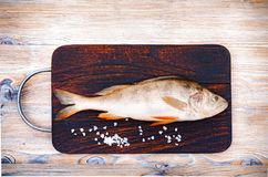 Fresh raw fish on a dark wooden background. River perch and spices. minimalism.  royalty free stock images