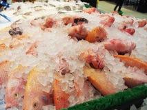 Fresh raw fish displayed on ice at supermarket. Photo of fresh raw fish displayed on ice at supermarket Royalty Free Stock Image