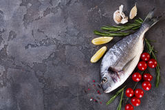 Fresh raw fish. Fresh raw dorada or sea bream fish with lemon, greens, rosemary tomatoes and spices on a black background, flat lay Royalty Free Stock Photo