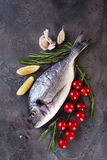 Fresh raw fish. Fresh raw dorada or sea bream fish with lemon, greens, rosemary tomatoes and spices on a black background, flat lay Royalty Free Stock Photos