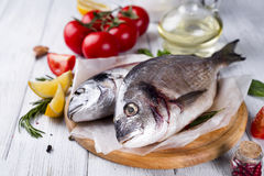 Fresh raw fish dorado Stock Image