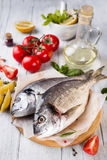 Fresh raw fish dorado Stock Photos
