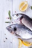 Fresh raw fish dorado Royalty Free Stock Photography