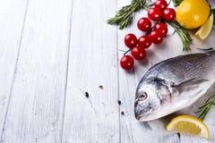 Fresh raw fish dorado Stock Images