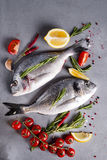 Fresh raw fish Royalty Free Stock Photo