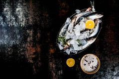 Fresh raw fish. With rosemary, lemon and salt on dark rusty background, copy space top view Stock Photos