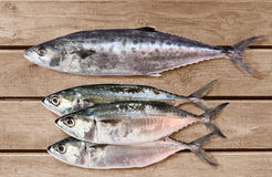 Fresh raw fish. On a kitchen wooden table top Stock Image