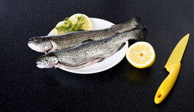 Fresh raw fish lying on a plate. Royalty Free Stock Image